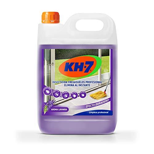 KH Profesional Desic - Insecticida fregasuelos de efecto preventivo - Fregasuelos perfumado con aroma a lavanda - Anti cucarachas, hormigas e insectos - 5000 ml