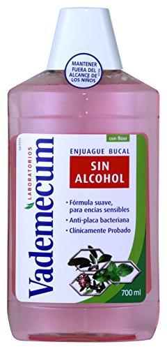 Vademecum - Enjuage Bucal Sin Alcohol - 700ml