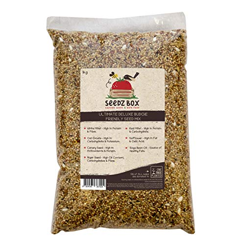 SeedzBox Mezcla Premium de semillas para periquitos. Comida para aves. Dieta equilibrada -alpiste, mijo blanco/ rojo, avena y negrillo, de alta calidad y saludable. Alto en proteína y fibra. Bolsa 1kg