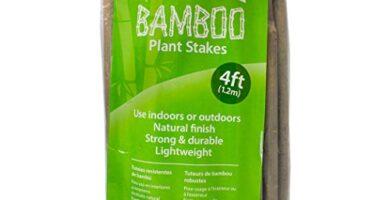CañAs De Bambu Ikea