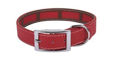Collar Scalibor 65 Cm Amazon