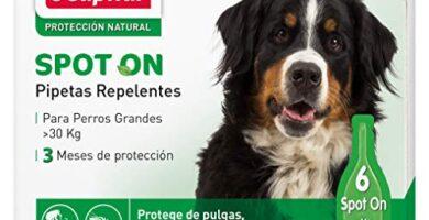Pipetas Para Perros Mercadona