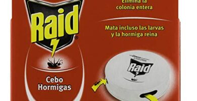 Trampa Hormigas Mercadona Opiniones